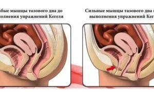 Сокращение матки после родов: рекомендации и полезные советы для нормализации процесса