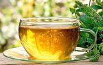 Чай с мятой при беременности: особенности напитка и рекомендации к применению