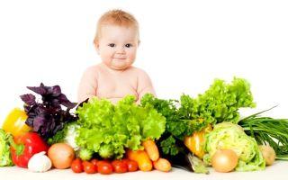 Полезные овощи для детей: список, правила введения в рацион, простые рецепты для первого прикорма