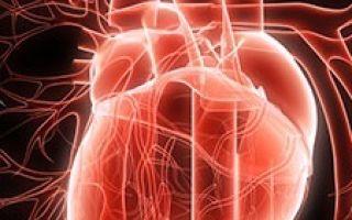 Классификация, диагностика и лечение при ВСД