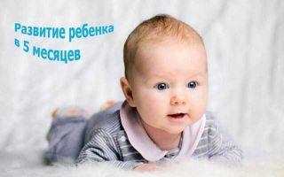 Развитие ребенка в 5 месяцев — что умеет малыш и какой режим дня соблюдать?