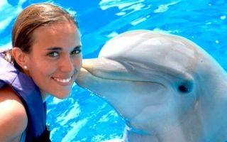 Дельфинотерапия для детей: кому нужна и как действует?