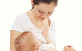 Можно ли кормить грудью беременной: возможен ли компромисс?