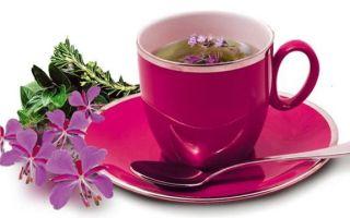 Иван-чай при беременности: полезные свойства и противопоказания, рекомендации по применению