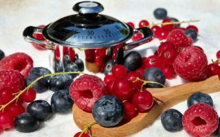 Аллергия на фрукты у ребенка: как проявляются симптомы и лечится ли такое заболевание?