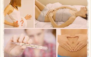 Ранние признаки беременности до задержки месячных: методы определения зачатия, отзывы рожавших мам