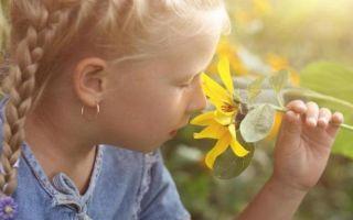 Первичная, вторичная и третичная профилактика приступов бронхиальной астмы