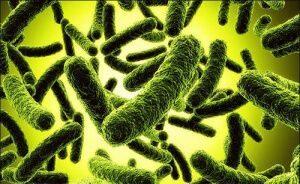 Профилактика дисбактериоза у детей