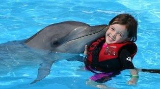 Дельфинотерапия для детей: кому нужна и как действует
