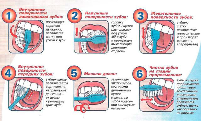 Как заботиться о зубах с первых дней жизни