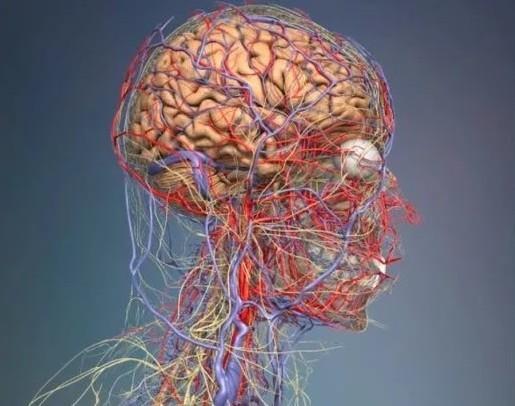 Что можно применять беременным при головной боли