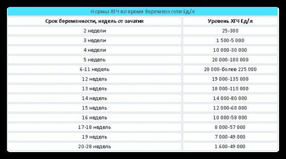 Таблица ХГЧ по дням после ЭКО: калькулятор онлайн в динамике по неделям беременности