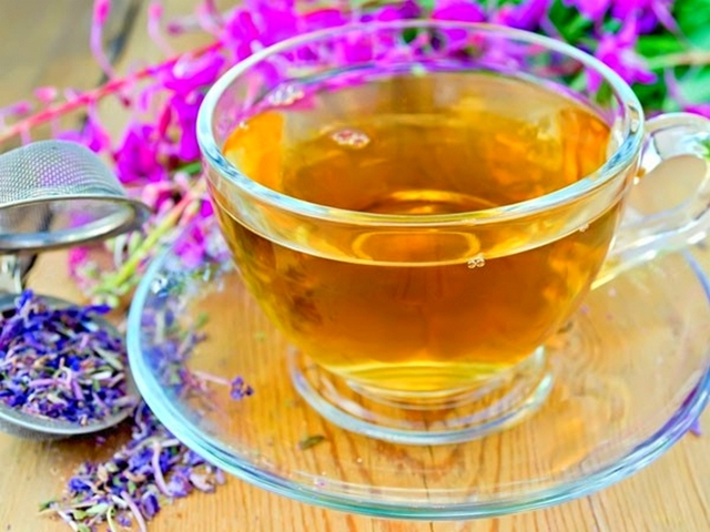 Иван-чай при беременности: польза и противопоказания