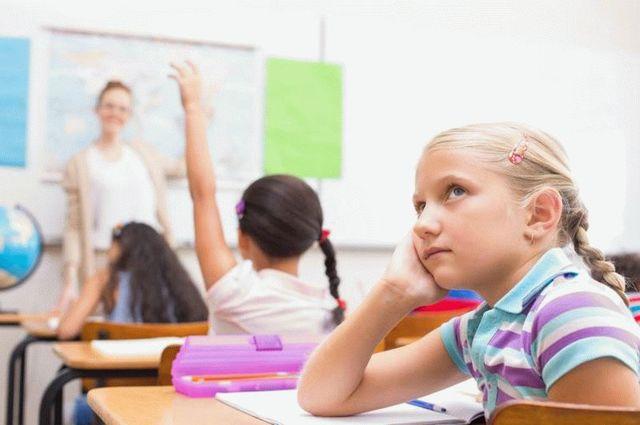 Ребенок не хочет учиться: что делать? Советы опытного психолога