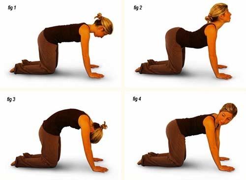 Беременность и спорт: какие физические нагрузки полезны?