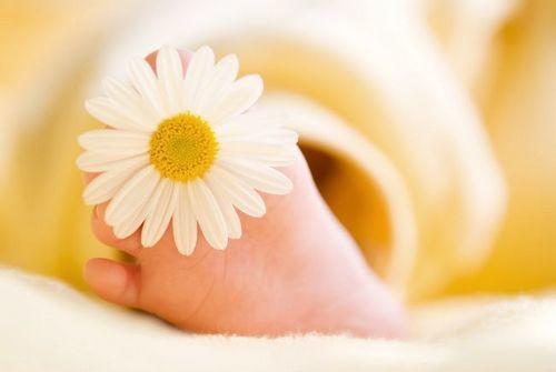Ромашка для купания новорождённых: как заваривать и сколько добавлять