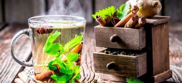 Чай с мятой при беременности: можно или нет?
