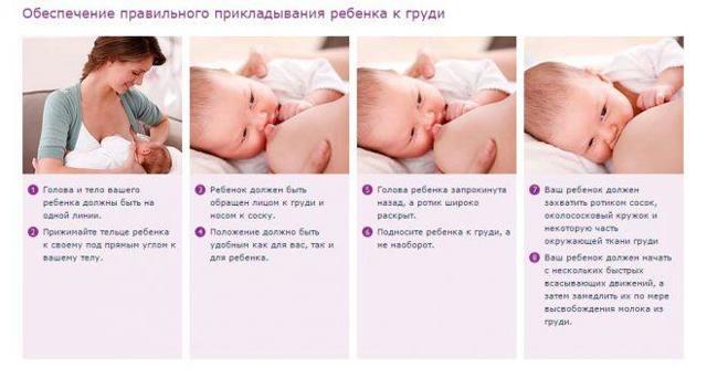 Правильное кормление новорожденных грудью