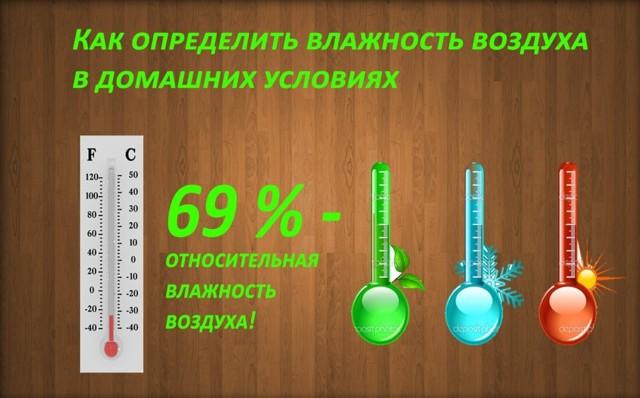 Как определить влажность в комнате