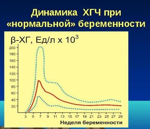ХГЧ при внематочной беременности: норма, показатели, таблица