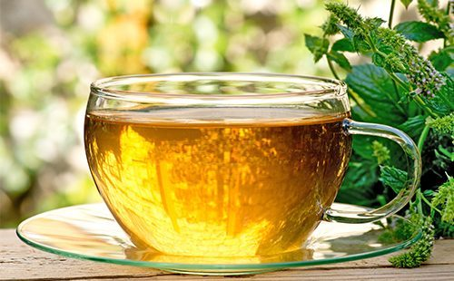 Мятный чай во время беременности