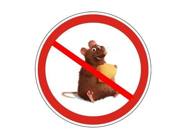 Профилактика микозов – предупредить легче, чем лечить