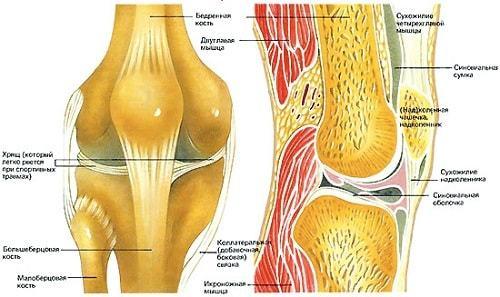 Болят колени после родов: причины, как снять боль, профилактика