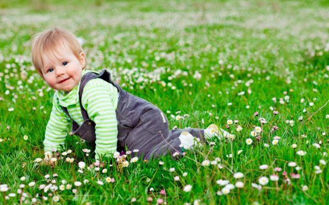 Прививка от клещевого энцефалита детям: схема, противопоказания, осложнения