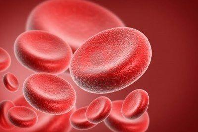 Симптомы, причины, диагностика и лечение ХЛЛ