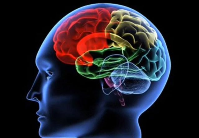 Симптомы и реабилитация после инсульта головного мозга