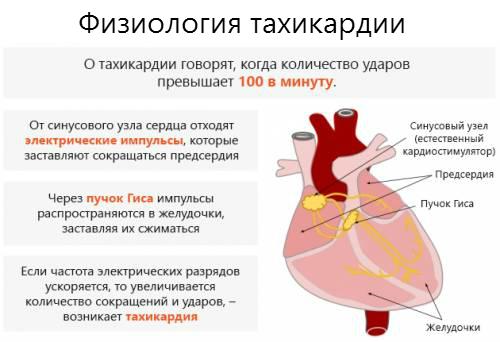 Причины, симптомы и лечение тахикардии