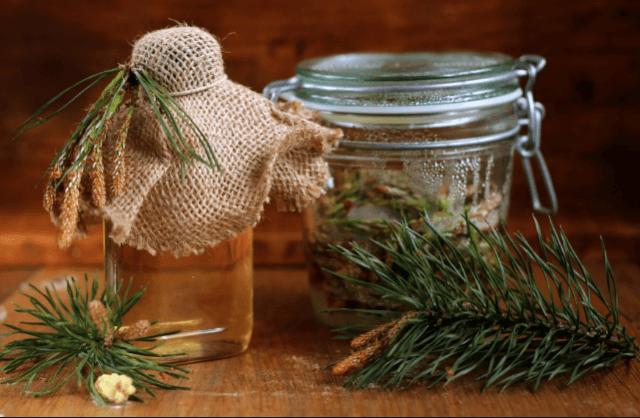 Простые рецепты из сосновых шишек для лечения инсульта