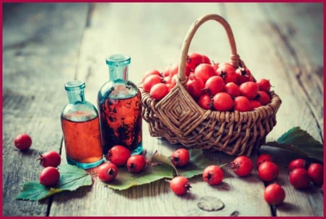 Рецепты народной медицины в борьбе с аритмией