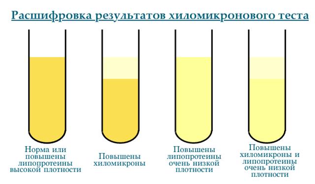 Характеристика липопротеинов и расшифровка результатов анализа