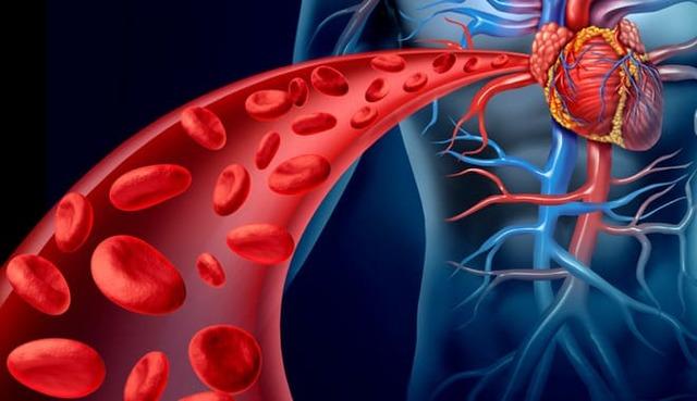 Как очистить кровь: народные рецепты или профессиональный подход?