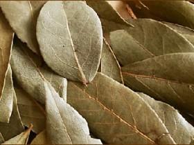 Лечение геморроя лавровым листом в домашних условиях