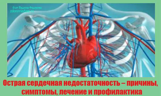 Профилактика, лечение и осложнения при сердечной недостаточности