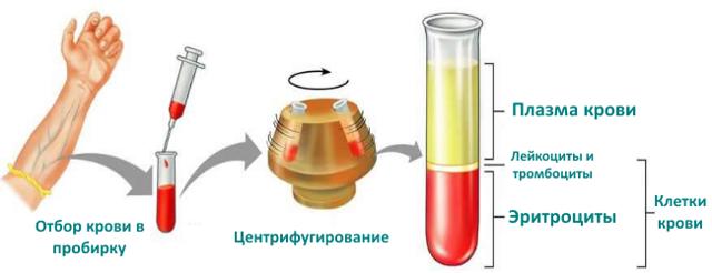 Пониженный уровень гематокрита в крови