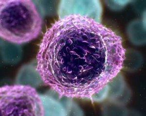 Причины, симптомы и лечение низкого уровня лимфоцитов у ребёнка