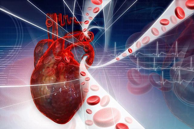 Как уменьшить риск развития заболеваний сердца и сосудов?