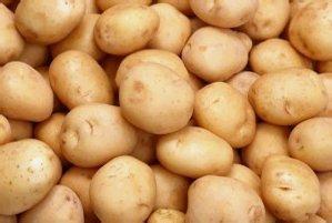 Как использовать картофель при геморрое