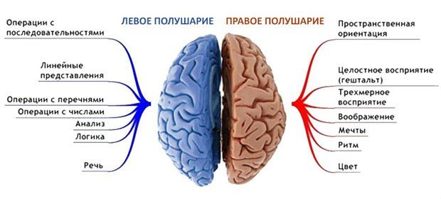Каких последствий ожидать при инсульте?