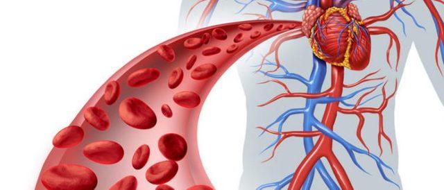 Как возникает и в чём опасность жировой эмболии?