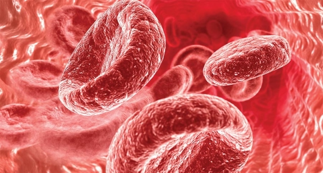 Как повысить уровень гемоглобина надобными способами?