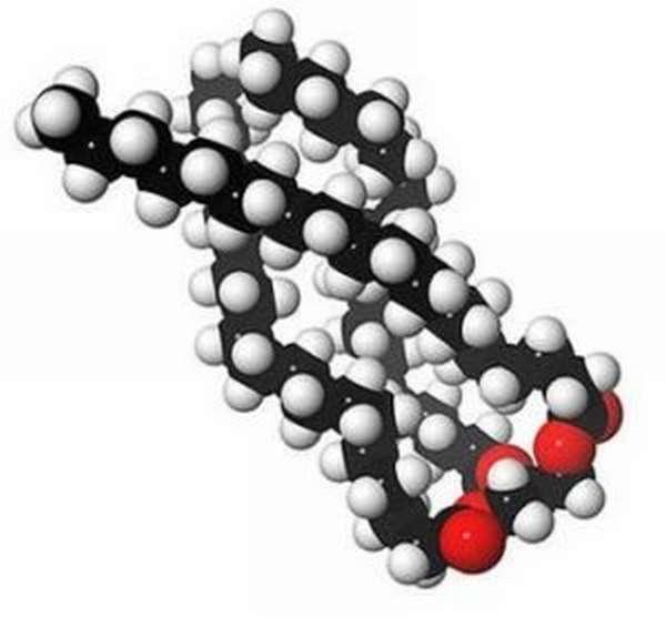 6b153b76a115b5fe36274f1f589bd0ce - Стапката на триглицериди во крвта предизвикува нивно зголемување и намалување