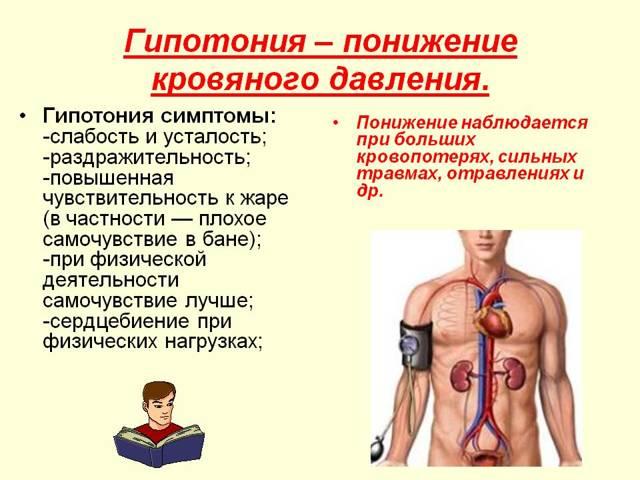 Причины гипотонии, способы лечения, препараты