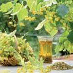 Применение травянных сборов для снижения уровня сахара