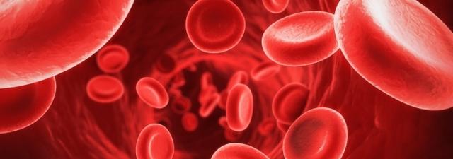 Стоит ли опасаться переливания крови при низком гемоглобине?