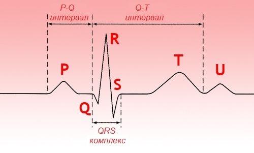 Отчего возникает, как проявляется и чем лечится сердечная блокада