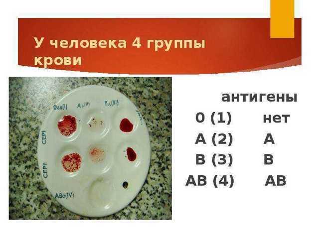 Как влияет на характер человека самая редкая группа крови?